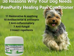 38 Reasons Why a dog needs PawPurity Healing Paw Conditioner