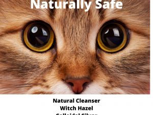 Cat with beautiful eyes shows ingredients for PawPurity Tear Stain Solution for Cats as being all natural and safe