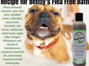 Ingredients listed for PawPurity Flea & Tick Shampoo