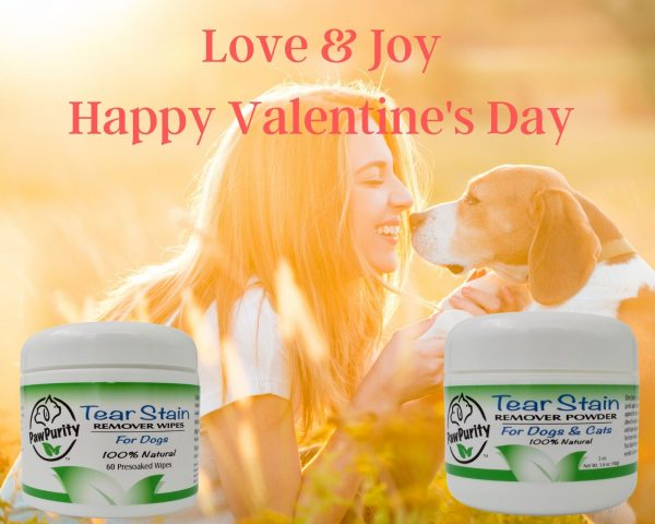 Celebrate Valentine's Day with the paws you love. Featuring a holiday gift set.