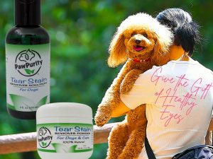 A man holds a dog with beautiful eyes for use to showcase our tear stain products.