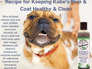 Recipe for PawPurity's Intensive Nourishing Shampoo to keep dog's skin and coat healthy and strong.