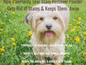 PawPurity Tear Stain Remover Gets rid of stains using 100% natural ingredients