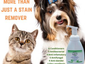A list of all the active properties of PawPurity Stain Remover Face Shampoo for Dog & Cats