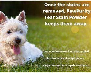 Shows the ways PawPurity Tear Stain Remover Powder Gets Rid of Tear Stains and Keeps Them Away