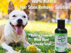 Description of the natural ingredients in PawPurity Tear Stain Remover Solution with a beautiful dog next to the solution