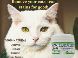 Image of a cat with beautiful eyes with a list of the 100% natural ingredients in the PawPurity Tear Stain Remover Powder