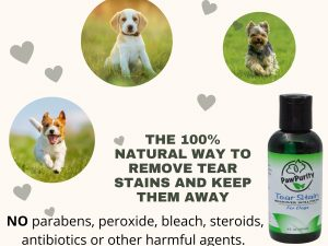 Pretty collage of three dogs running in the grass with a description of PawPurity's Tear Stain Solution does not include parabens, peroxide, bleach, steroids, antibiotics or other harmful agents
