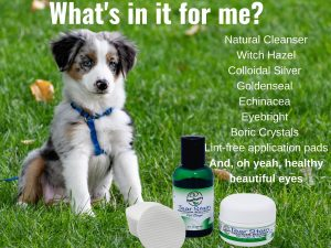 Dog and product showing the ingredients in the PawPurity Tear Stain Remover Kit