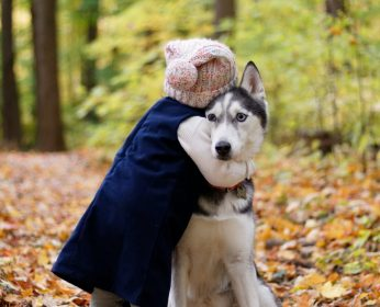PawPurity_Child_hugging_a_dog_shows_how_easy_it_would_be_for_pesticide_flea_treatments_to_rub_off_on_the_child_used_in_an_article_by_PawPurity_pointing_out_Chemical_vs_Natural_Flea Prevention Treatments on Dogs article