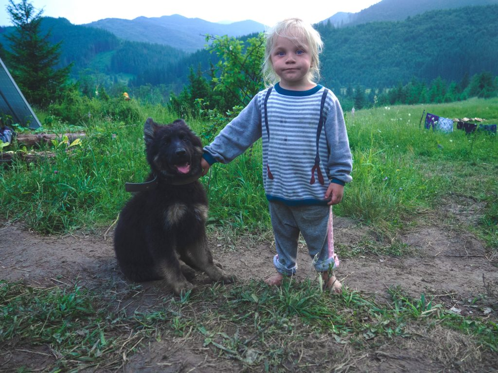 Little girl is petting a dog which could have fleas. Natural flea prevention is a good way to keep dogs flea free without the use of collars where the pesticides can rub off on children.